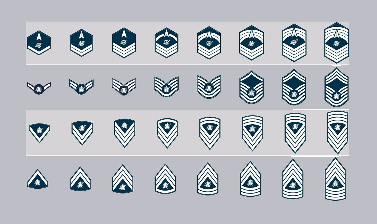 Guardians, the Space Force wants you to help determine your enlisted rank insignia